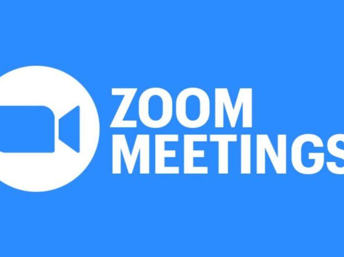 Zoom heeft speciale toegang tot de iPad-camera, waardoor gebruikers op afroep kunnen multitasken